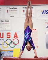 Dynamic Gymnastics Spriit of America Jan 2013